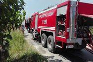 Ηλεία: Μεγάλη φωτιά στην Ανδρίτσαινα