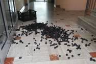 Αγρότες πέταξαν ελιές στα γραφεία του ΕΛΓΑ στο Αγρίνιο
