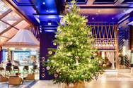Αυτό είναι το πιο ακριβό χριστουγεννιάτικο δέντρο στον κόσμο