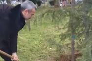 Θεσσαλονίκη: O Κωνσταντίνος Ζέρβας φύτεψε συμβολικά ένα κέδρο Ιμαλαΐων (video)