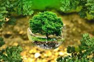 Aπλοί τρόποι για να βοηθήσετε το περιβάλλον