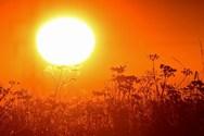 Το 2019 ήταν η δεύτερη πιο ζεστή χρονιά στον κόσμο