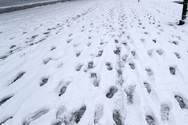 Μειωμένη κατά 40% φέτος η χιονοκάλυψη στην Ελλάδα