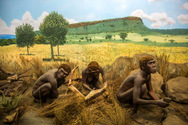 Έρευνα ανατρέπει ό,τι ξέραμε για το φαγητό του προϊστορικού ανθρώπου