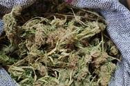 Θεσπρωτία: Ζευγάρι μετέφερε στο ΙΧ του 15 κιλά χασίς