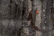 Ελικόπτερο με μπάλα κατεδάφισης επιστρατεύτηκε για να αφαιρέσει ασταθή βράχο (video)