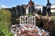 Ηλεία - Κορωνοϊός: Πετάνε τις φράουλες στη Ν. Μανωλάδα (pics+video)