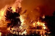 Ρωσία - Περισσότερες από 5.600 πυρκαγιές σημειώθηκαν από τις αρχές του έτους