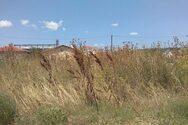 Καθαρισμός οικοπέδου στο Λάππα από τον Δήμο Δυτικής Αχαΐας και την Πολιτική Προστασία