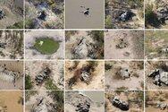 Νότια Αφρική: Μυστήριο με μαζικούς θανάτους ελεφάντων - Γιατί ανησυχούν οι επιστήμονες;