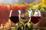 Δυτική Ελλάδα - Οι όροι και οι διαδικασίες που αφορούν στην απόσταξη οίνου σε περίπτωση κρίσης