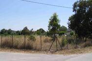 Νέα έκκληση από τον Δήμο Πατρέων για καθαρισμό των οικοπέδων από ξερά χόρτα