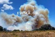 Ανεξέλεγκτη μαίνεται η φωτιά στην Εύβοια (video)