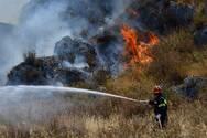 Ηλεία: Φωτιά σε δασική έκταση στην Φιγαλεία