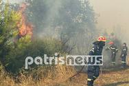 Ηλεία: Μαίνεται η μεγάλη φωτιά στο Γραμματικό (pics+video)