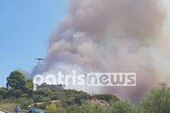 Παπαγεωργίου για πυρκαγιά στην Ηλεία: