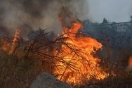 Ηλεία - Αναζωπυρώθηκε η πυρκαγιά που είχε ξεσπάσει στο Χελιδόνι