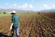 Έκπτωση φόρου έως και 2.100 ευρώ για τους αγρότες