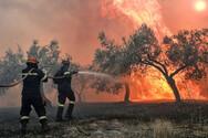 Δυτική Ελλάδα - Παραμένει υψηλός ο κίνδυνος και τη Δευτέρα για εκδήλωση πυρκαγιάς
