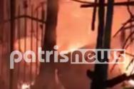 Κατάκολο: Ξέσπασε φωτιά σε κατάστημα εστίασης (video)