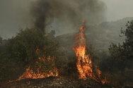 Κρήτη - Φωτιά στην Αγία Βαρβάρα Ηρακλείου