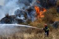 Ηλεία - Φωτιά ξέσπασε στην Ανδρίτσαινα
