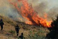 Αχαΐα: Ξέσπασε φωτιά στα Σαγέικα