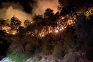 Δυτική Ελλάδα: Απίστευτες εικόνες από την χθεσινή φωτιά στο Τρίκορφο Ναυπακτίας (pics+video)
