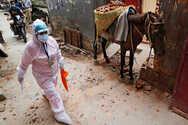Ινδία - Κορωνοϊός: 1.113 θάνατοι και 92.605 κρούσματα το τελευταίο 24ωρο
