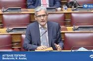 Ο Άγγελος Τσιγκρής μίλησε στη Βουλή για το προσφυγικό και τη μετανάστευση (video)