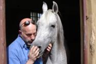Ο Έλληνας κτηνίατρος που φροντίζει τα βασιλικά άλογα του Σουλτάνου του Ομάν