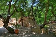 Αγία Θεοδώρα: Το εντυπωσιακό εκκλησάκι της Πελοποννήσου με τα 17 πλατάνια (video)