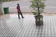 Μεθυσμένος άνδρας τρομάζει σκύλους με κινήσεις Kung Fu