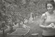 Η πτυχιούχος πληροφορικής που έγινε αγρότισσα (video)