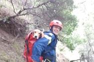 Καλάβρυτα: Καρέ καρέ ο απεγκλωβισμός σκύλου από φαράγγι - Κυνηγούσε λαγό (φωτο)