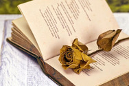 To 3ο Διεθνές Φεστιβάλ Ποίησης Πάτρας και τα Βραβεία Ζαν Μωρεάς σε κοινή διαδικτυακή εκδήλωση