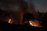 Αχαΐα: Φωτιά στη Χαραυγή Ερυμάνθου