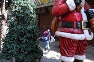 Χριστούγεννα: Πόσο κυμαίνονται φέτος οι τιμές στα έλατα