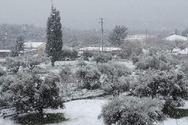 Όταν στην Πάτρα είχαμε δει... άσπρες μέρες! (φωτο)