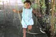 Κοριτσάκι τρέχει αμέριμνο όταν ξαφνικά ένα φίδι βρίσκεται στο δρόμο του