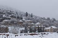 Χιόνισε στην Καλλιθέα της Φωκίδας και οι εικόνες του χωριού είναι μαγικές (φωτό)