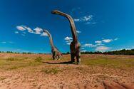Νέο είδος δεινόσαυρου ίσως ήταν το μεγαλύτερο χερσαίο ζώο που έζησε ποτέ