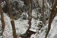 Πήλιο: Ο express χιονιάς δημιούργησε ένα παραμυθένιο σκηνικό (video)