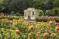 Νέο βιβλίο για τους Βασιλικούς Κήπους του Μπάκιγχαμ