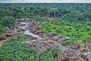 Προστατευόμενες εκτάσεις του Αμαζονίου «πωλούνται μέσω Facebook»