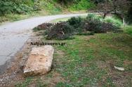 Έπεσε πεύκο και ογκόλιθος στο κάστρο της Ναυπάκτου - Έκλεισε ο δρόμος