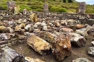 Λέσβος: Το απολιθωμένο δάσος πόλος έλξης για τουρισμό