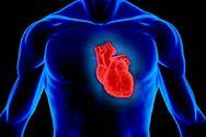 Καρδιά: Το αγαπημένο τρόφιμο που τη βλάπτει
