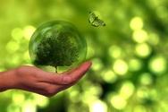 Κλιματική αλλαγή: Πόσο απειλεί την παραγωγή τροφίμων