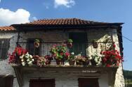 Άνω Βλασία Καλαβρύτων - Η ζωή στο χωριό με τα χρώματα και τα αρώματα!
